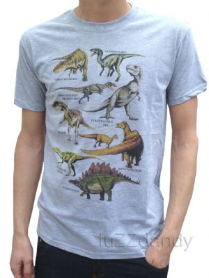 Dinosaur - Tee Shirt (grey)